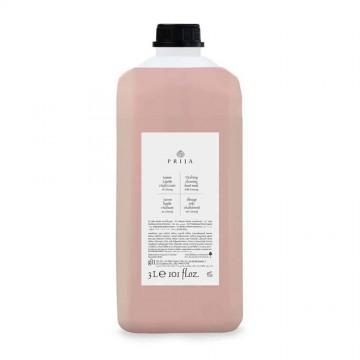 Prija gaivinantis dušo gelis ir šampūnas 3L